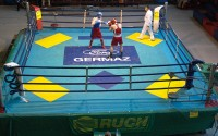 2 Hosts in the Boxing Ring